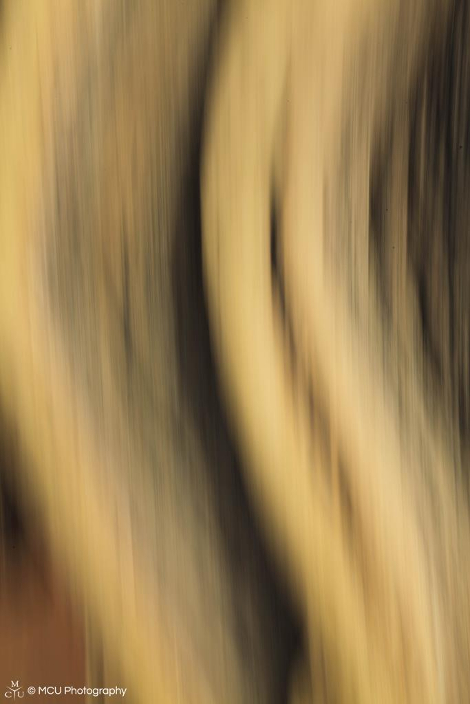 abstract34.jpg