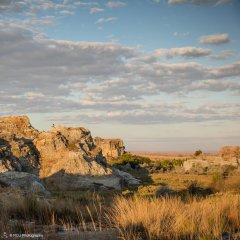 landscape_madagascar21.jpg